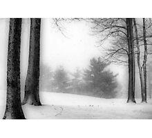 December Blizzard Photographic Print