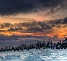 Winter on the hill by Panalot
