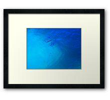 Momma Fish Framed Print