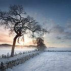 Moniack Midwinter by colin campbell