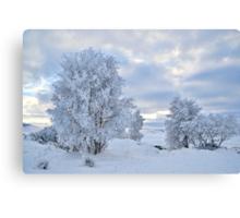Winter Wonderland, Glencoe Canvas Print