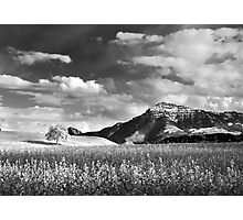 Swiss Landscape Photographic Print