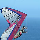 Newcastle hang glider by Bryan Cossart
