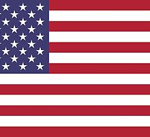 """The national flag of the United States of America -  Authentic 10:19 """"G-spec"""" (for """"government specification"""" ) Scale and colors by Bruiserstang"""
