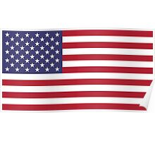 "The national flag of the United States of America -  Authentic 10:19 ""G-spec"" (for ""government specification"" ) Scale and colors Poster"