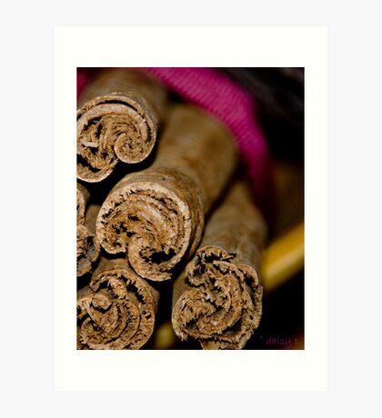 Cinnamon Ends Art Print