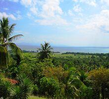 an awe-inspiring Haiti landscape by beautifulscenes