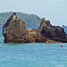 The Rocks in Samana,  Dominican Republic by Memaa