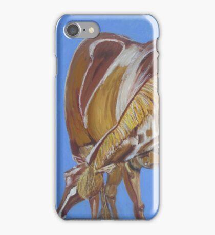 Horsey iPhone Case/Skin