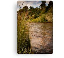 Jamieson - Goulburn River Canvas Print