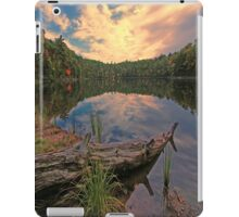 The Setting Sun iPad Case/Skin