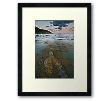 Pavement at Wye River Framed Print