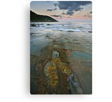 Pavement at Wye River Metal Print