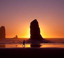 Sunset Stroll by Anne McKinnell