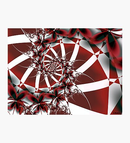 Red Petals Photographic Print