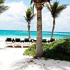 Tropical Beach by tammykayphoto