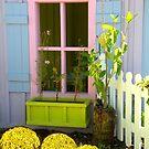 Cracker House Window by Rosalie Scanlon