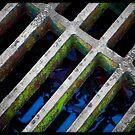 Untitled.00260 by Byron  Gates Jr