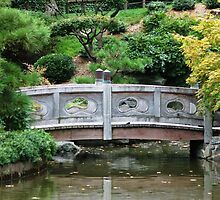 Bridge in New York botanical park by loiteke