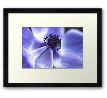 Gathering Up  Framed Print