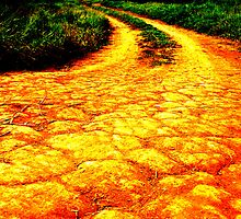Follow the Yellow Road by atoth