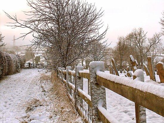 """Rural Winter White"" by Bradley Shawn  Rabon"