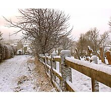 """Rural Winter White"" Photographic Print"
