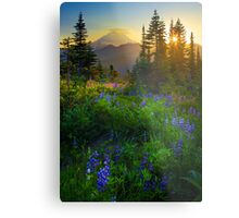 Mount Rainier Sunburst Metal Print