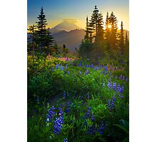 Mount Rainier Sunburst Photographic Print