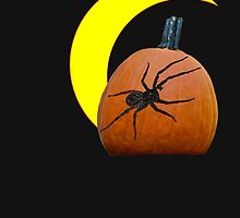 Pumpkin and spider t-shirt by Carolyn Clark
