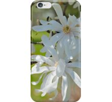 Star magnolia  iPhone Case/Skin
