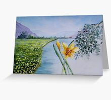 Daffodils !!!! Greeting Card