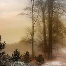 Christmas Eve in the Snow by Ann Garrett