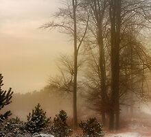 Christmas Eve in the Snow by Ann Garrett