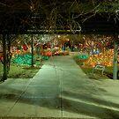 Christmas Walkway!  by Jeremy  Jones