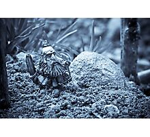 Dwarf Lost In The Enchanted Forest Photographic Print