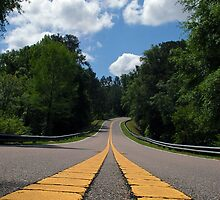 Winding Road  by Michael L Dye