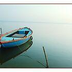 Solitude by Dr. Harmeet Singh