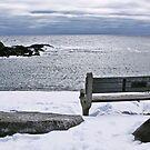 Winter at Sea,  by Brenda Dow