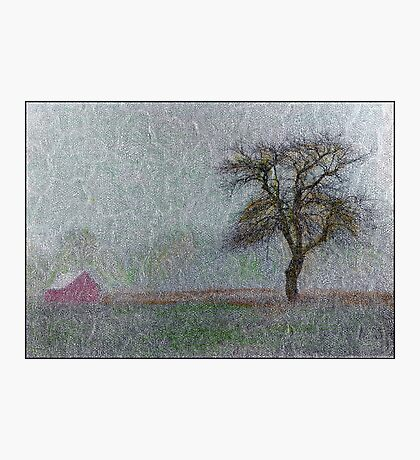 Red Barn in Snowstorm Photographic Print