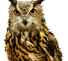 Great Horned Owl by VisionQuestArts