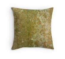 ...More Developing Organisms! Throw Pillow