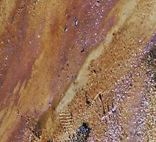 Abstract by M.Nature, Footprints by Man by Cathy O. Lewis