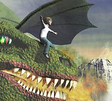 Dragon rider by Carol and Mike Werner