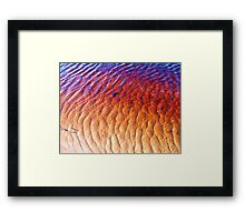 Fish Scales? Framed Print