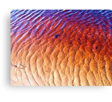Fish Scales? Canvas Print