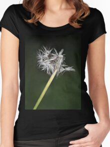 Dreamy Faded Wishes Women's Fitted Scoop T-Shirt