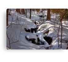 Snowy Stream Canvas Print