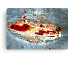 space hopper Canvas Print