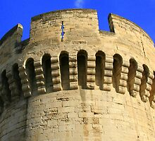 Closeup of the Wall around Old Avignon * by Laurel Talabere
